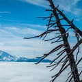 The Three Sisters (10,358 ft) floating above an inversion.- Black Butte Hike