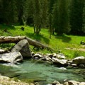 The third soaking pool is nestled in a meadow and ranges between 100 and 104 degrees.- Jerry Johnson Hot Springs