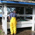 Fish cleaning station at Doran Regional Park.- Doran Regional Park + Doran Beach