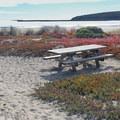 Picnic tables are available along Doran Beach.- Doran Regional Park + Doran Beach