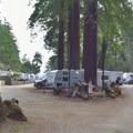 The eastern half of Anchor Bay Campground.- Anchor Bay Campground