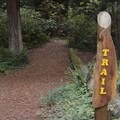 Trail marker at Gualala River Redwood Park.- Gualala River Redwood Park
