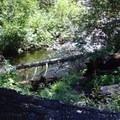 Eight Mile Creek.- Eightmile Lake + Lake Caroline