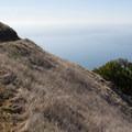 Coastal Trail. Mount Tamalpais State Park.- Coastal Trail, Pantoll to W Ridgecrest Blvd