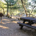Day use and picnic areas.- Bootjack Campground