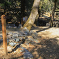 A typical site at Bootjack Campground.- Bootjack Campground