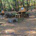 Bootjack campground walk-in sites.- Bootjack Campground