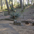 Pantoll Campground in Mount Tamalpais State Park.- Mount Tamalpais State Park