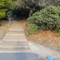 A short, quarter-mile Plankwalk Trail leads from the parking area up to East Peak.- East Peak