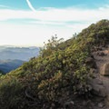 The trail to East Peak. - East Peak