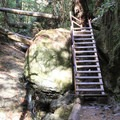 The famous Steep Ravine ladder.- Steep Ravine Trail to Dipsea Trail Loop