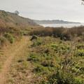 Palomarine Beach Trail.- Palomarin Beach