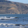 The sharky waters of the red triangle do little to thin the crowds at Bolinas Beach.- Bolinas Beach