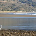 Stinson Beach lies across the channel entrance to Bolinas Lagoon.- Bolinas Beach