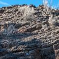 One of the many interestingly shaped lava rocks.- Flatiron Rock Trail