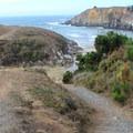 Salt Point Tail at Stump Beach Cove. - Salt Point Trail