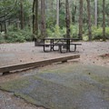 Panther Flat Campground.- Panther Flat Campground