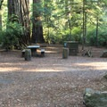 Jedediah Smith Campground.- Jedediah Smith Campground