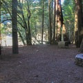 Group campsite in Jedediah Smith Campground.- Jedediah Smith Campground