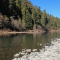 Jedediah Smith Campground is on the banks of the scenic Smith River. - Jedediah Smith Campground