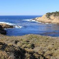 Headland Cove.- Point Lobos State Natural Reserve
