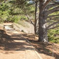 The Bird Island Trail in Point Lobos State Natural Reserve.- Bird Island Trail