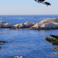 Bird Island in Point Lobos State Natural Reserve.- Bird Island Trail