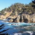 Cypress Cove.- Cypress Grove Trail