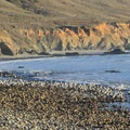 Andrew Molera State Beach.- Andrew Molera State Park