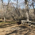 Shaded picnic areas are avaialbe at the main parking area.- Andrew Molera State Park