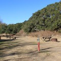 Trail Camp Campground in Andrew Molera State Park.- Andrew Molera Walk-In Campground