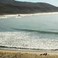 Sunbathers soaking up an empty Andrew Molera State Beach. - Headlands Trail