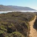 Molera Point.- Headlands to Creamery Meadow Loop