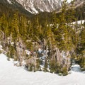 Navigating lower Royal Basin can be challenging without a map and GPS.- Royal Basin Backcountry Ski Tour