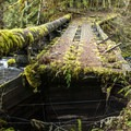 An old log bridge to cross the river (yes, you can cross here).- Clackamas + Memaloose Falls
