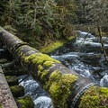 The river below the log bridge.- Clackamas + Memaloose Falls