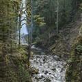 South Fork Clackamas Falls.- Clackamas + Memaloose Falls