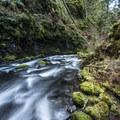 Memaloose Creek below Memaloose Falls.- Clackamas + Memaloose Falls