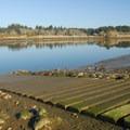 Boat ramp in John's River State Wildlife Area.- John's River State Wildlife Area