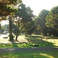 Westside campsites in Twin Harbors State Park Campground.- Twin Harbors State Park