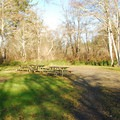 Group campsite in Twin Harbors State Park Campground.- Twin Harbors State Park Campground