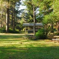 East side area in Twin Harbors State Park Campground.- Twin Harbors State Park Campground