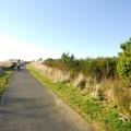 Westport Light State Park beach access.- Westport Light State Park