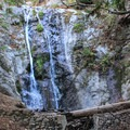 Pfeiffer Falls at the end of the Pfeiffer Falls Trail.- Pfeiffer Big Sur State Park