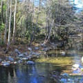 Nearly 3 miles of the Big Sur River flow through Pfeiffer Big Sur State Park.- Pfeiffer Big Sur State Park