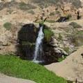 Small waterfall above Alamere Falls.- Palomarin Hike to Alamere Falls