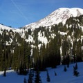 View north to Mount Rainier (14,411').- Paradise Valley Snowshoe Loop