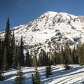 View of Mount Rainier (14,411') from Nisqually Vista Snowshoe Trail.- Nisqually Vista Snowshoe Trail