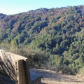 A viewing bench is located at the end of the Valley View Trail.- Valley View + Pfeiffer Falls Trail Hike