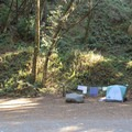 Limekiln State Park Campground has 28 campsites.- Limekiln State Park